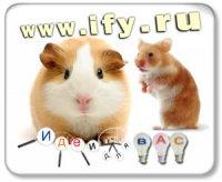 Бизнес идея. Создание агенства по прокату мелких домашних животных с правом выкупа.