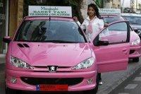 Бизнес идея. Дамское такси.