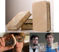 Бизнес идея: Изоляция дома с помощью грибов