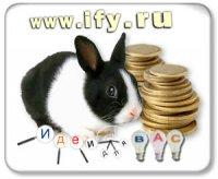 Бизнес идея: Разведение кроликов