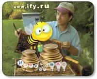 Бизнес идея: Разведение пчел