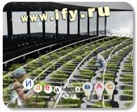 Бизнес идея: Вертикальная ферма «Agricultural Urbanism»
