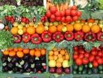 Выращивание овощей и способы их реализации