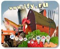 Место встречи покупателей и продавцов органической пищи