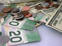 Как новичкам научиться работать на валютном рынке Форекс?