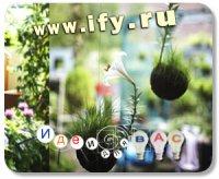 Бизнес идея: Магазин для городских садоводов