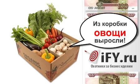 Бизнес идея: Зеленый бизнес на коробках