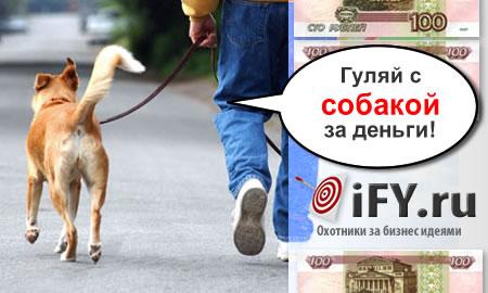 Бизнес идея: Выгул собак – это не обязанность, это доход!
