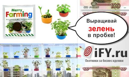 Растения в крышечках из-под бутылки