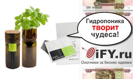 Выращивание зелени с помощью набора GrowBottle для гидропоники