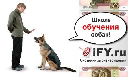 Школа обучения собак