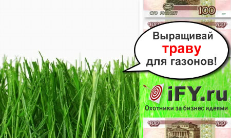 Бизнес идея выращивания травы для газонов
