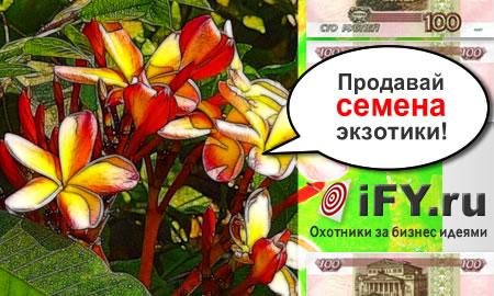 Бизнес идея интернет-магазина семян экзотических растений