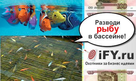 Бизнес идея разведения рыбы ценных пород