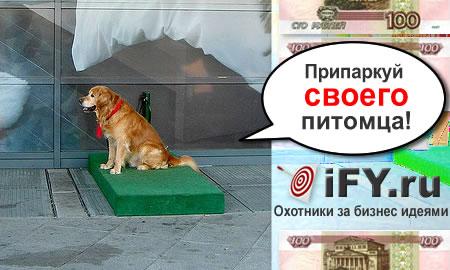 Собачьи парковки: удобно для хозяина, безопасно для животного!