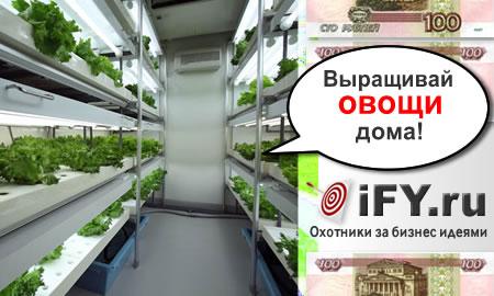 Выращивай овощи в городе!