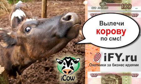 Лечим корову по смс