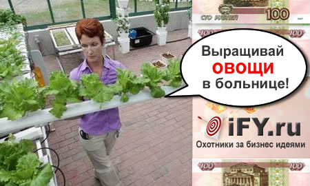 Выращивай овощи в больнице
